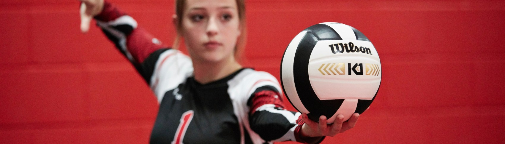Volleyball Schützer